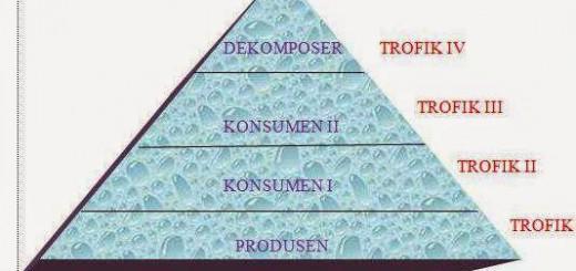 Piramida-2Bmakanan