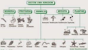 Sistem klasifikasi menurut lima kingdom
