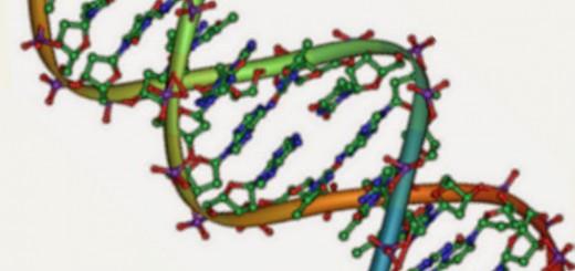Heliks-2Bganda-2BDNA