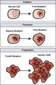 Pertumbuhan sel kanker