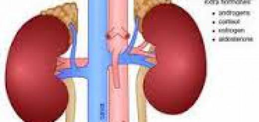 Kanker adrenal