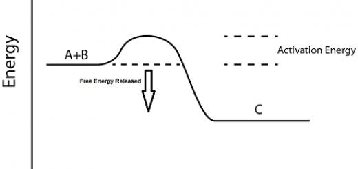 Reaksi eksergonik
