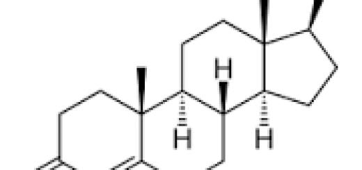 Rumus struktur testosteron