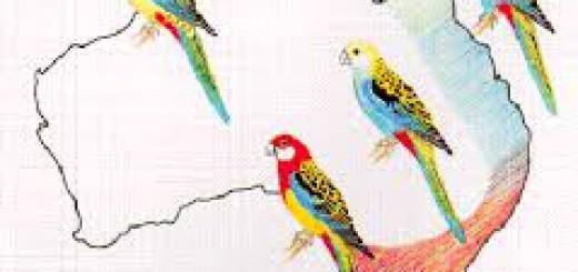 Variasi genetik pada burung