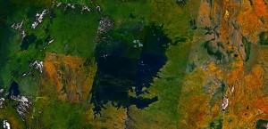 Danau Victoria dan hilangnya keanekaragaman hayati