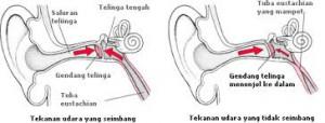 Gendang telinga