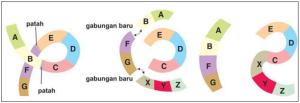 Translokasi perpindahan, apabila kromosom pertama patah di dua tempat dan kromosom yang satunya patah di satu tempat.